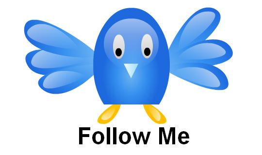 30 Twitter Icon Set