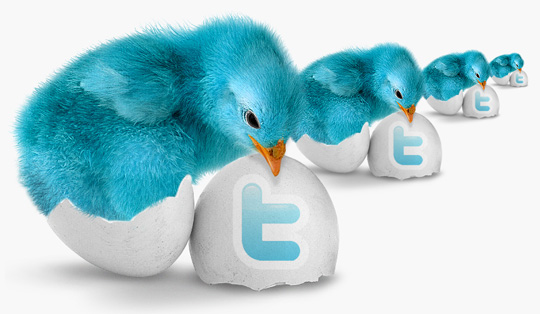 8 Twitter Icon Set