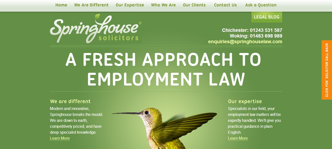 Green Website Design - Spinghouse