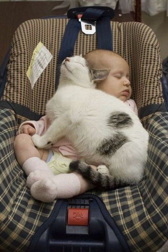 sleeping baby pictures