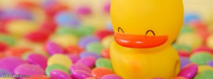 cute duck cover