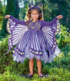 Butterfly Costume for Halloween