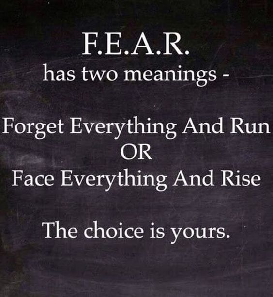 F.E.A.R. has two meanings