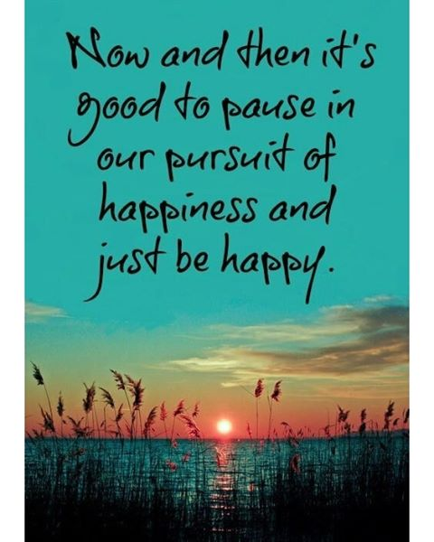 Now and then it's good to pause in our pursuit of happiness and just be happy.