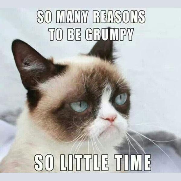 so many reasons to be grumpy