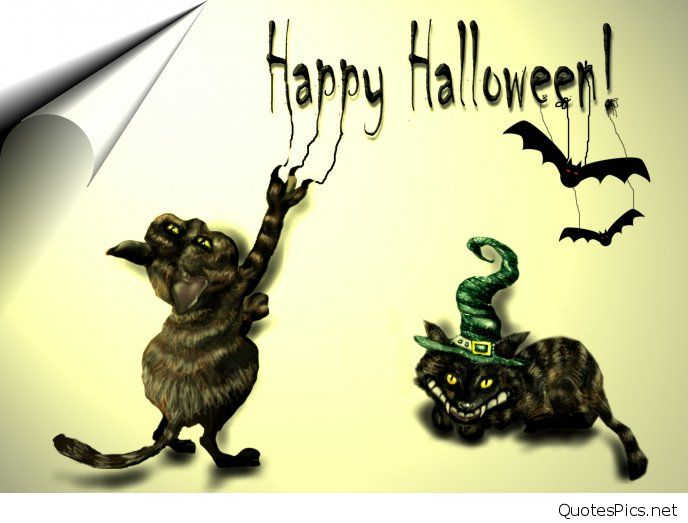 happy-halloween-scary-cats-and-bats