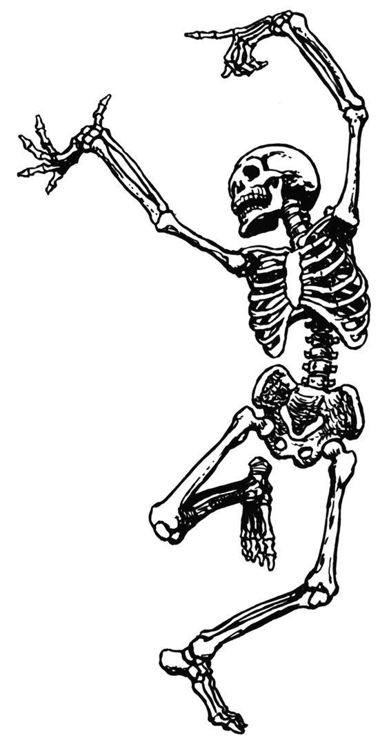 Dale's skeleton idea photo
