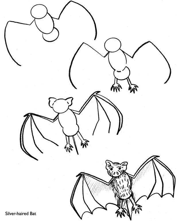Step by Step spooky bat