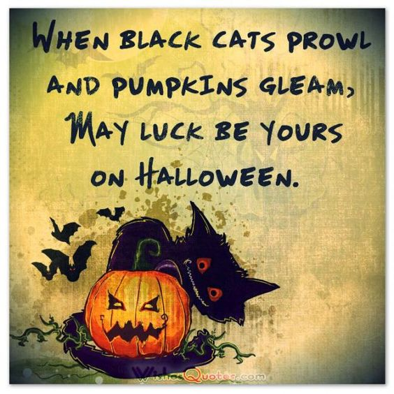cute qute Halloween postcard