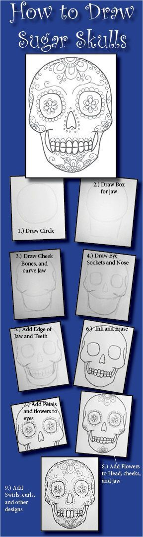 how to draw sugar skulls