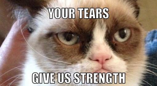 cute-funny-Cat-meme-13