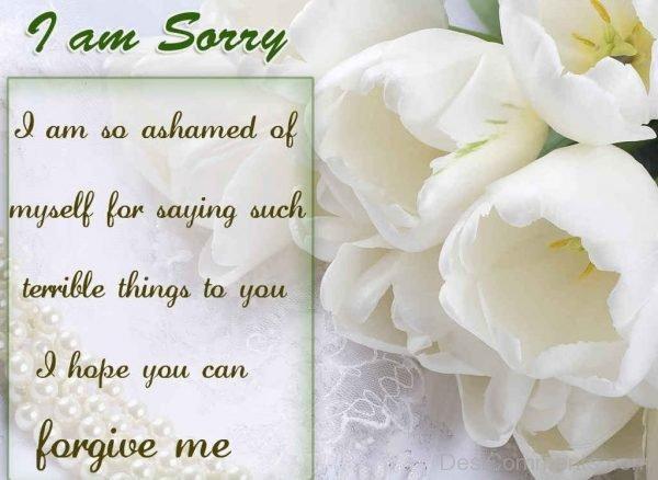 i am sorry forgive me