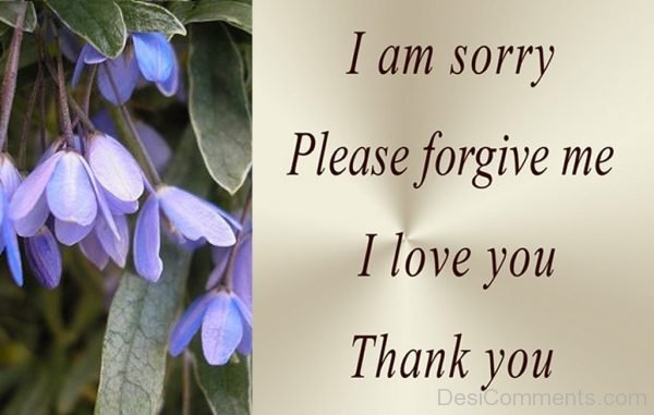 i am sorry please forgive me i love you thank you