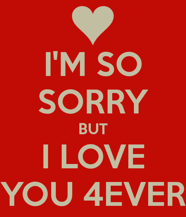 i'm so sorry but i love you 4ever