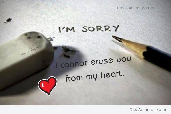 i'm sorry i cannot erase you from my heart