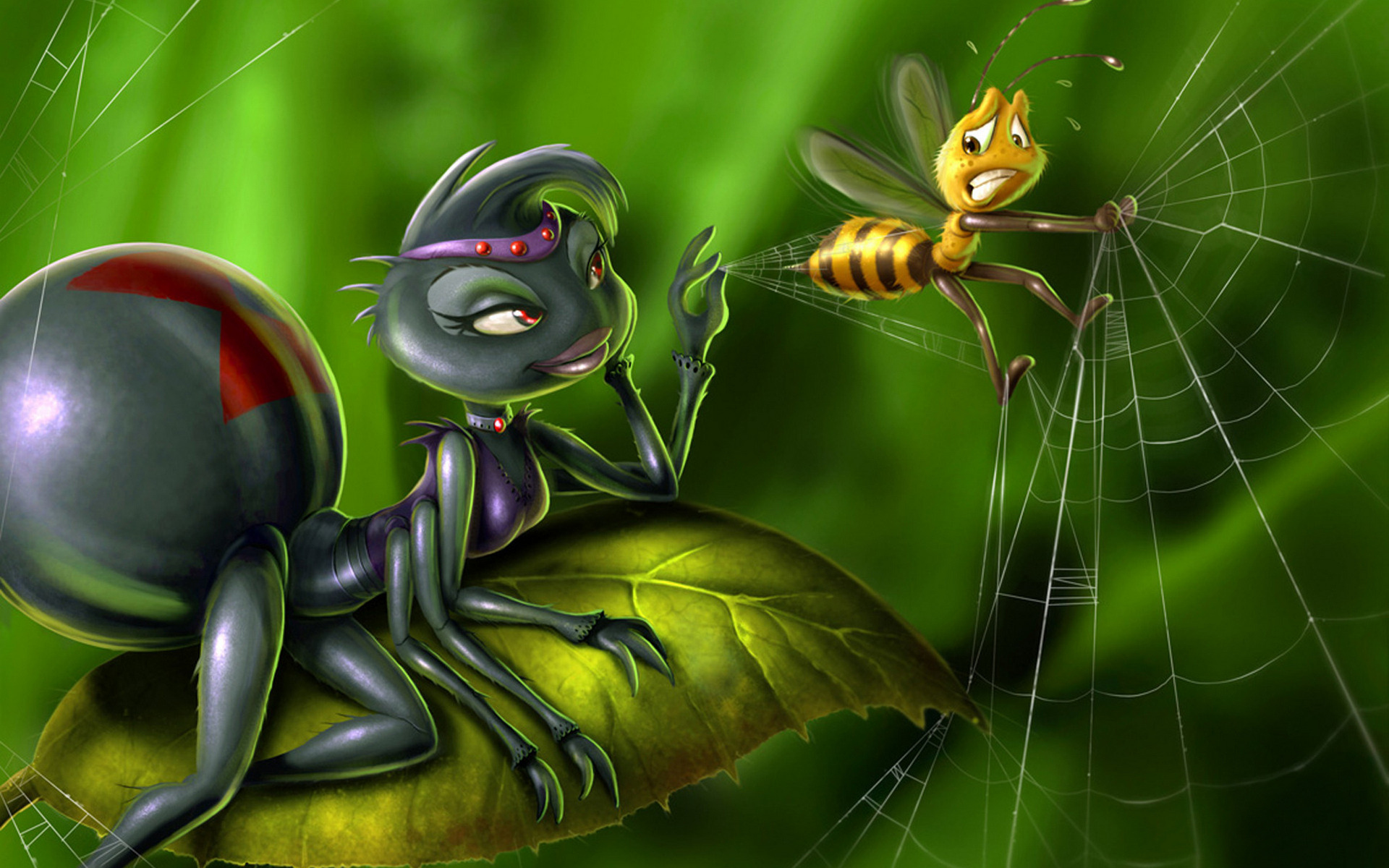 funny spider web 3d wallpaper in hd