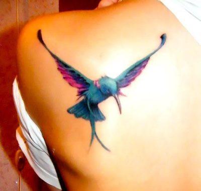 3d hummingbird tattoo on shoulder blade