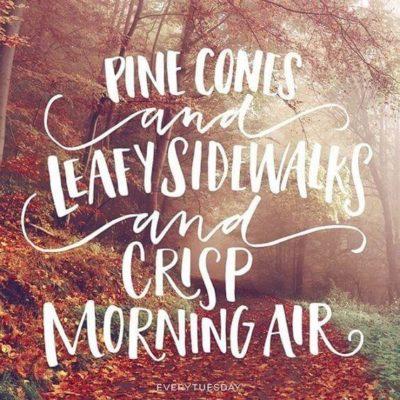 best autumn sayings