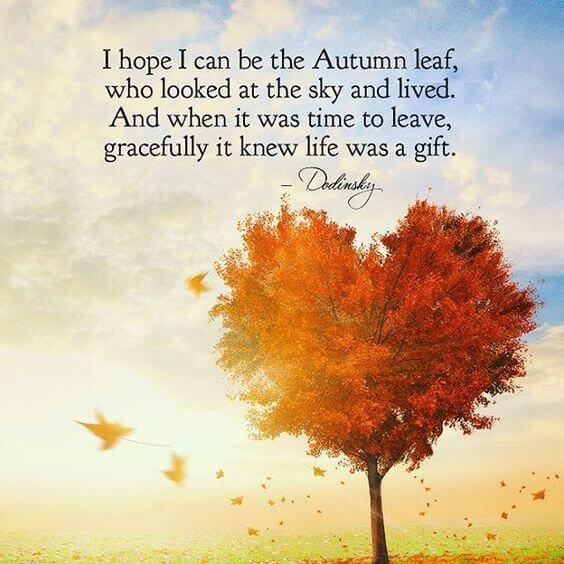 cute autumn quotes