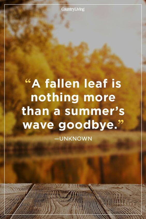 goodbye summer quotes