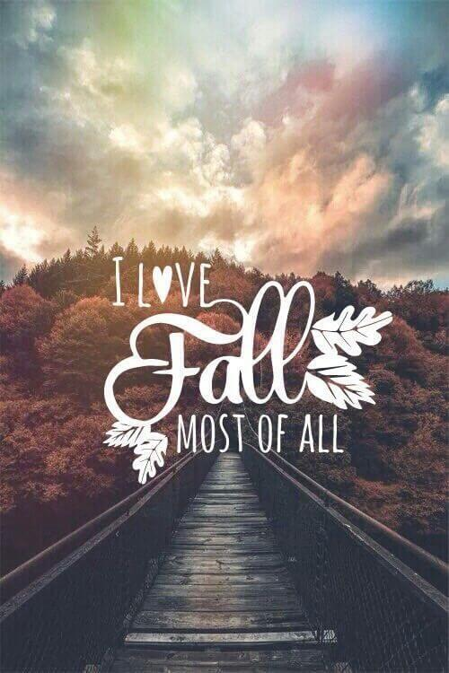 i love fall quotes
