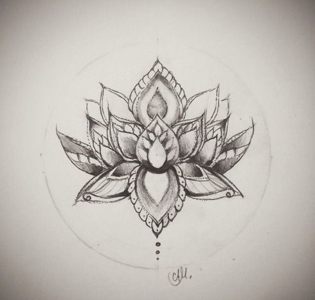 lotus tattoo drawing