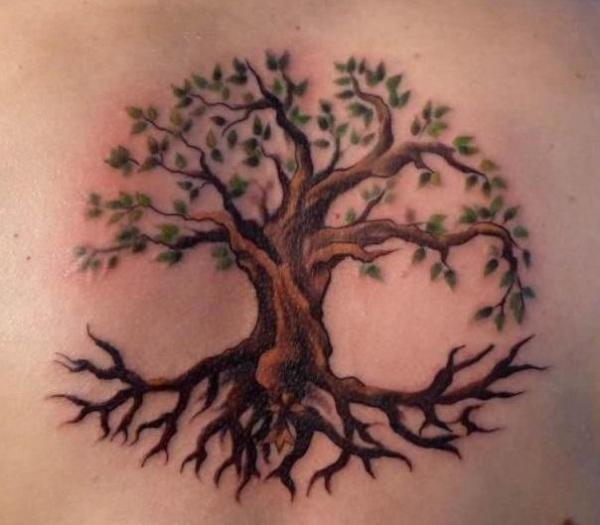 simple celtic tree of life-bodhi tree tattoo