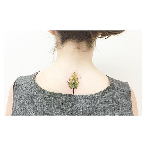 small watercolor evergreen tree tattoo design on back for girls