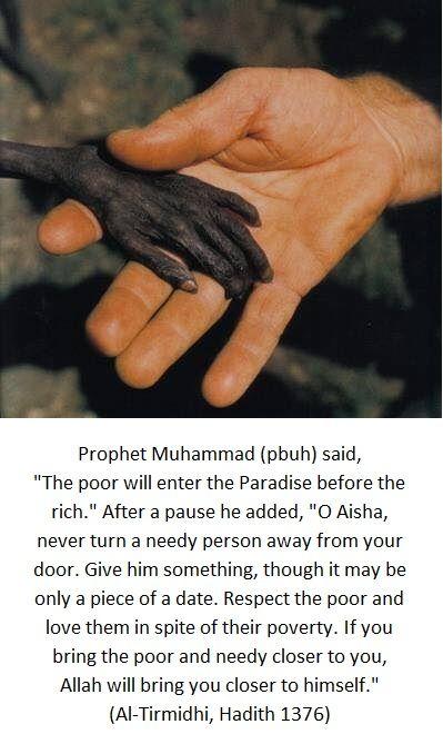 Prophet Muhammad Said