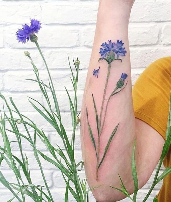 cornflower tattoo designs