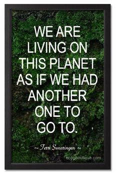 we are living on this planet as if we had another one to go to