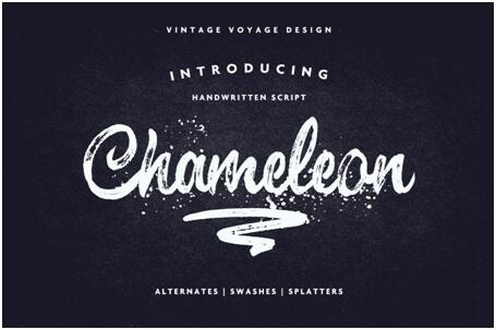 chameleon font