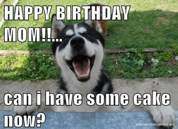 can i have some cake happy birthday mom meme