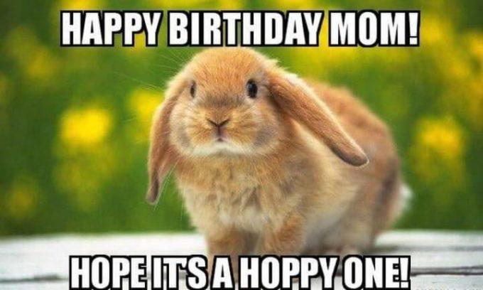 hoppy birthday mom meme