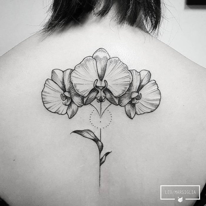 outlined dotwork orchid floral tattoo on back