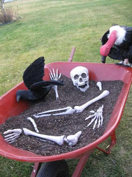 halloween skeleton decoration idea for garden