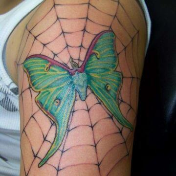 butterfly spider web tattoo design on shoulder