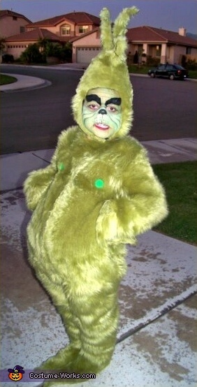 The Grinch costume idea for halloween