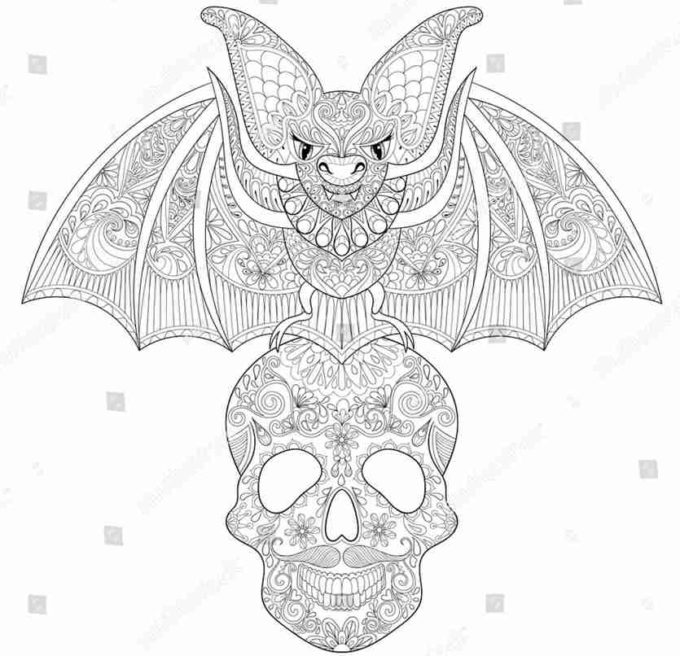 bat on skull coloring picture